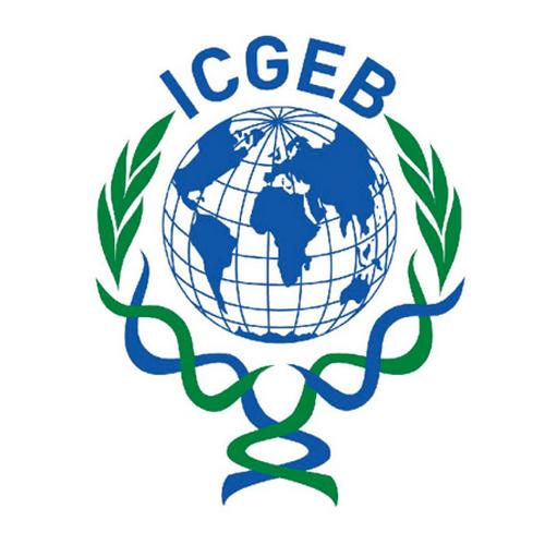 ICGEB Logo